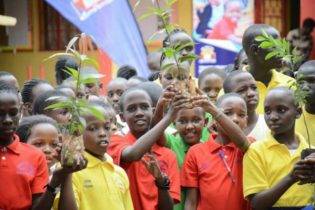 Kids To Get Free Fruit Tree Seedlings At Green Xmas Festival