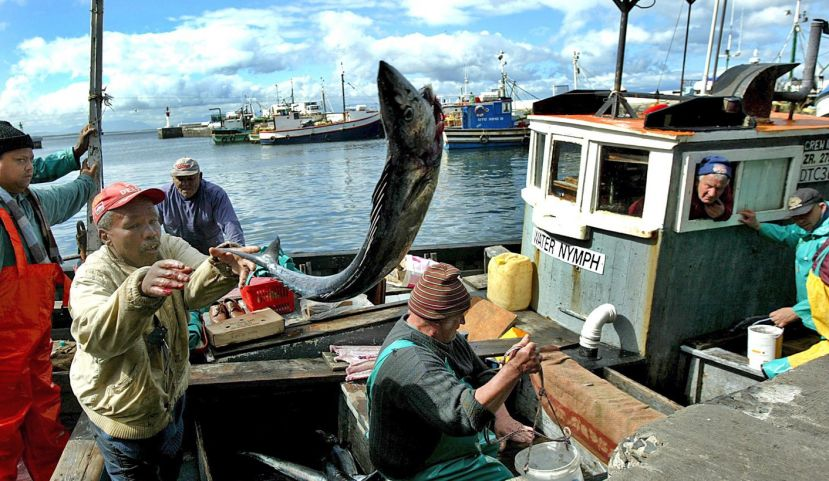 Africa's Small-Scale Fisheries Critical To Food Security