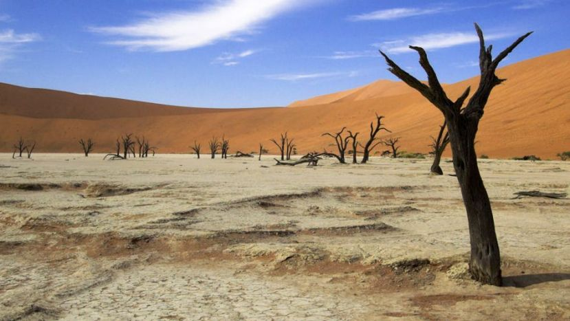 Electrifying The Deserts Of Africa