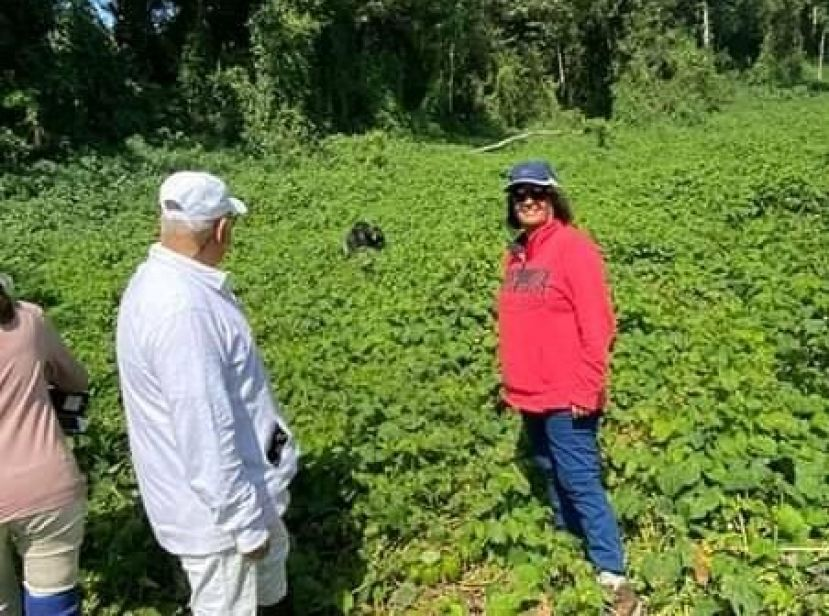 Sudhir and wife Jyotsna Ruparelia were in Bwindi Impenetrable National Park (BINP) for gorilla trekking