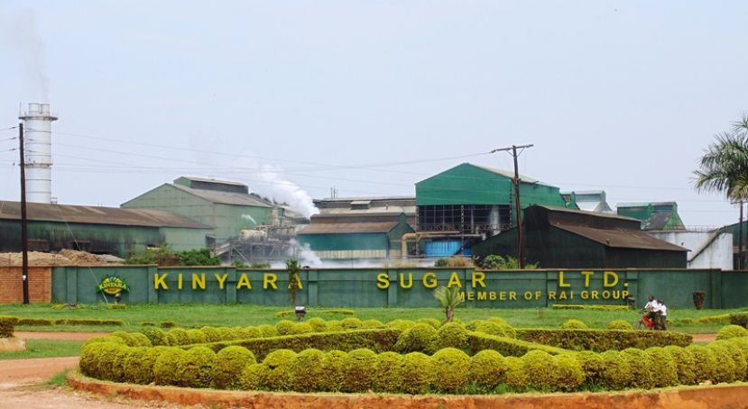 Sugar cane poaching is affecting Kinyara Sugar Limited