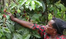 ICT Project To Aid Women Smallholder Farmers In Uganda, Kenya Launched