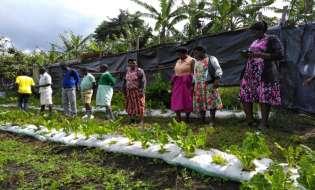 PELUM Uganda, Partners Promote Organic Food, Farming For Better Production, Environment